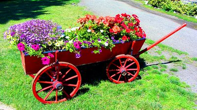 Flower Cart Download Jigsaw Puzzle