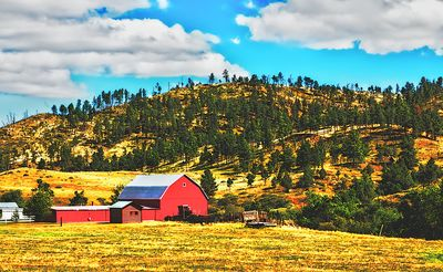 Barn, Wyoming Download Jigsaw Puzzle